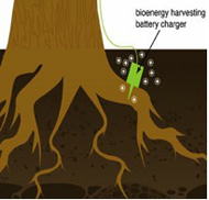 Bioenergy Harvester diagram